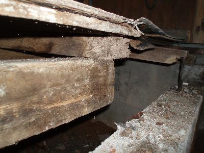 風呂の上がり口付近の木材